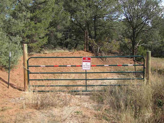 Residential Lot - Pecos, NM (photo 2)