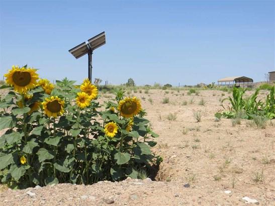 Farm - Cerrillos, NM (photo 3)