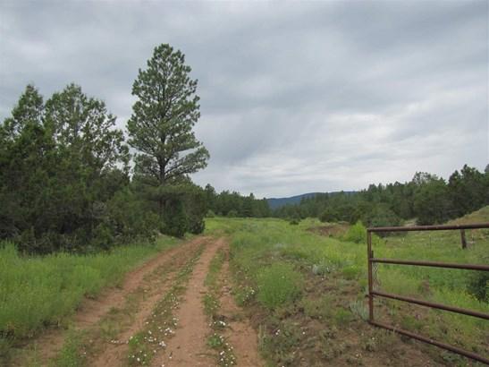 Residential Lot - San Geronimo, NM (photo 1)