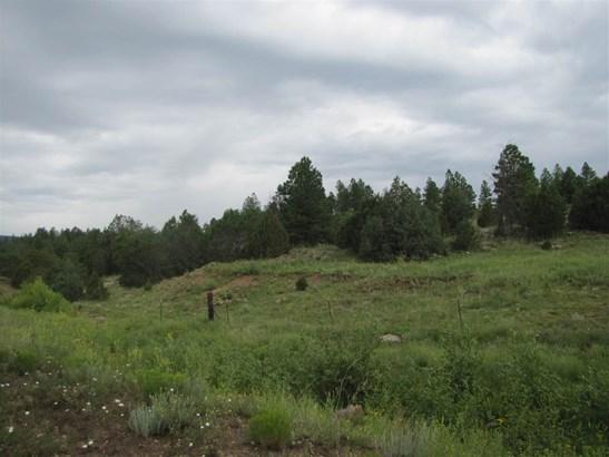 Residential Lot - San Geronimo, NM (photo 3)