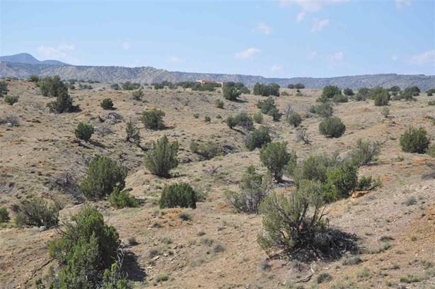 Undeveloped - Cerrillos, NM (photo 5)