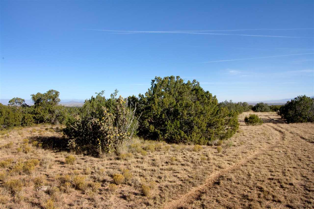 Residential Lot - Cerrillos, NM (photo 3)