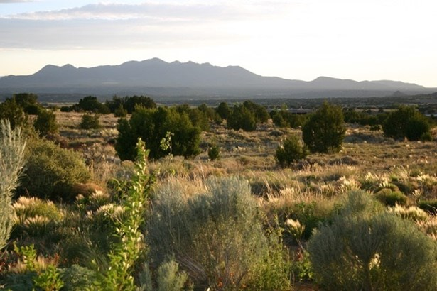 Residential Lot - Galisteo, NM (photo 1)