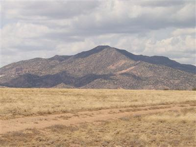 Residential Lot - Medanales, NM (photo 1)