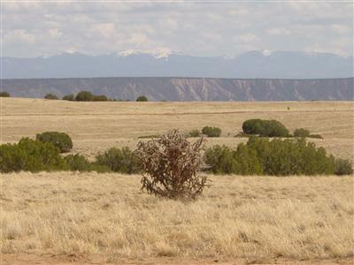 Residential Lot - Medanales, NM (photo 2)