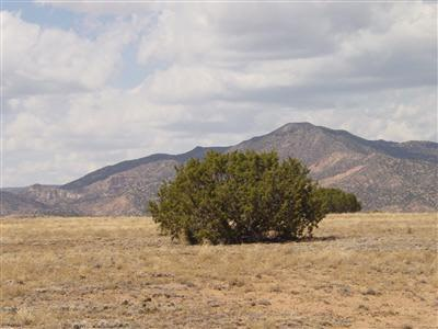 Residential Lot - Medanales, NM (photo 4)