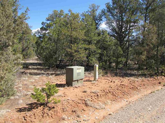 Residential Lot - Rowe, NM (photo 2)