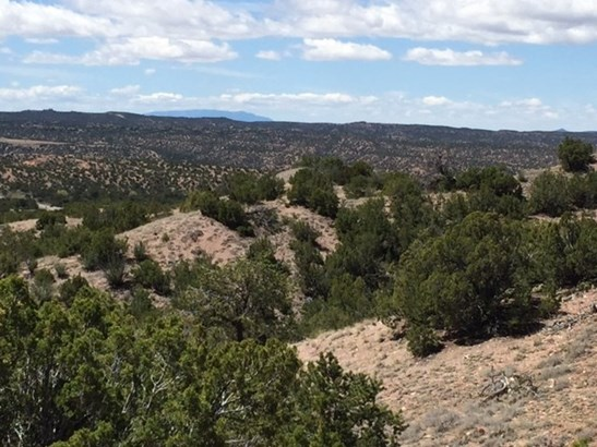 Residential Lot - Tesuque, NM (photo 4)