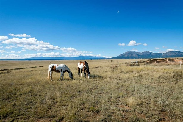 Ranch, Working - Stanley, NM (photo 1)