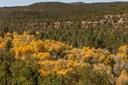 Ranch, Pleasure - Pecos, NM (photo 1)