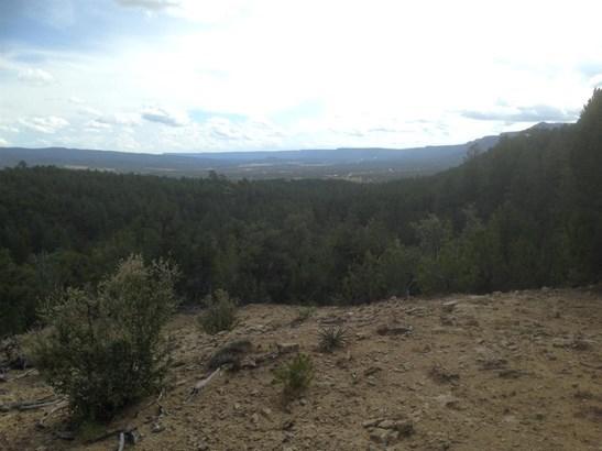 Residential Lot - Pecos, NM (photo 4)