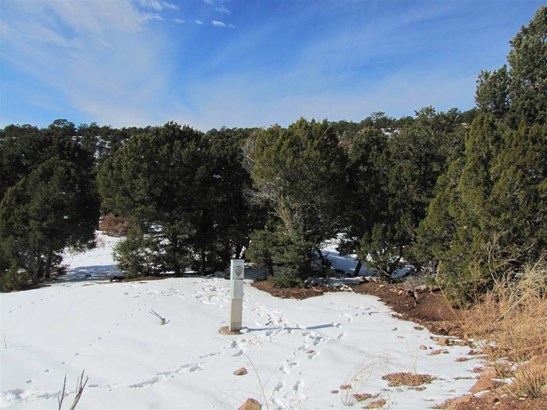 Residential Lot - Pecos, NM (photo 4)