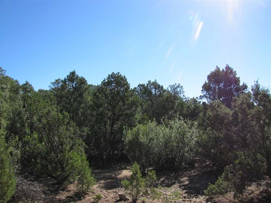 Residential Lot - Glorieta, NM (photo 2)