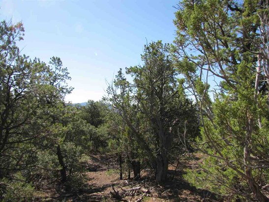 Residential Lot - Glorieta, NM (photo 4)