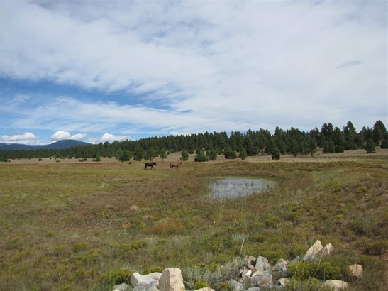 Ranch, Pleasure - San Geronimo, NM (photo 1)
