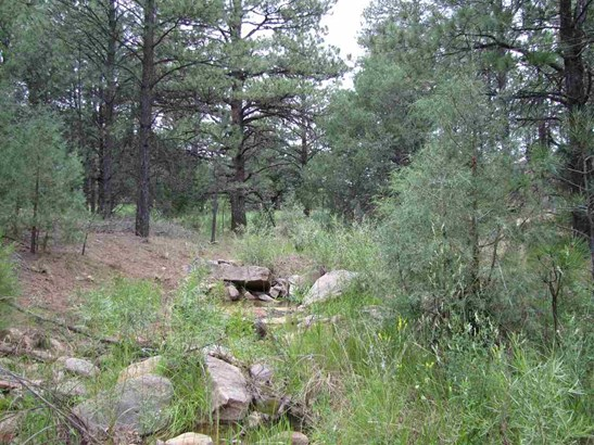 Residential Lot - Las Vegas, NM (photo 3)
