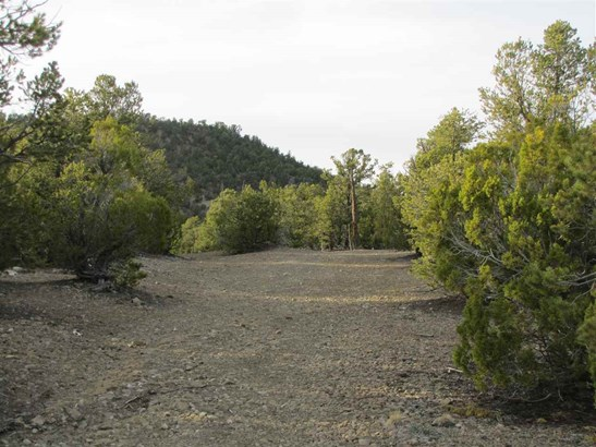 Residential Lot - Pecos, NM (photo 3)