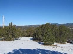 Residential Lot - Ilfeld, NM (photo 4)