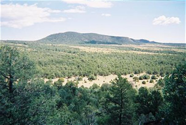 Ranch, Working - Glorieta, NM (photo 2)