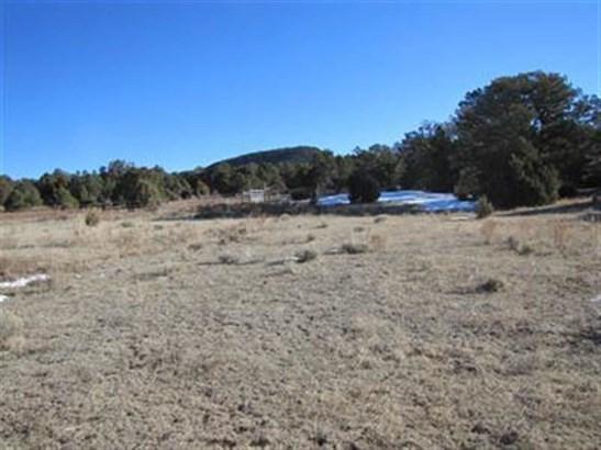 Ranch, Working - Glorieta, NM (photo 4)