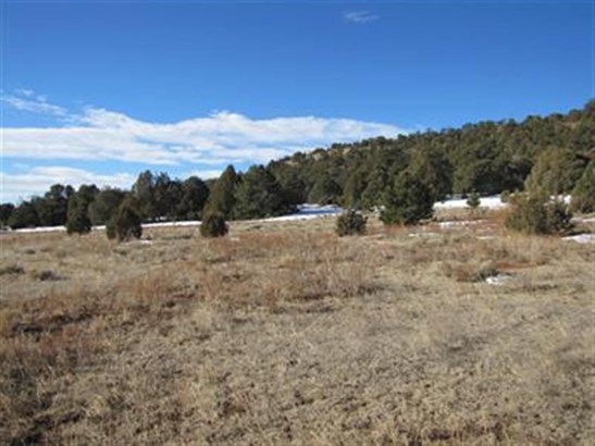 Ranch, Working - Glorieta, NM (photo 5)