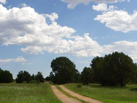 North New Mexico, Single Family - Las Vegas, NM (photo 3)