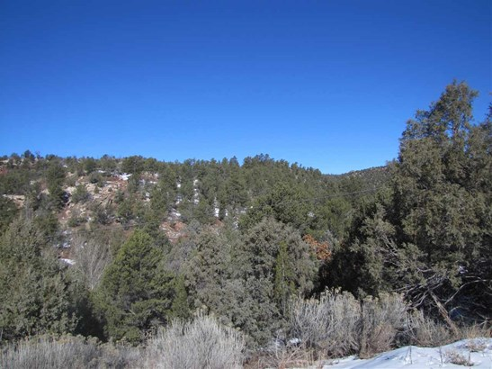 Undeveloped - Glorieta, NM (photo 3)