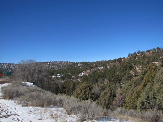Undeveloped - Glorieta, NM (photo 4)
