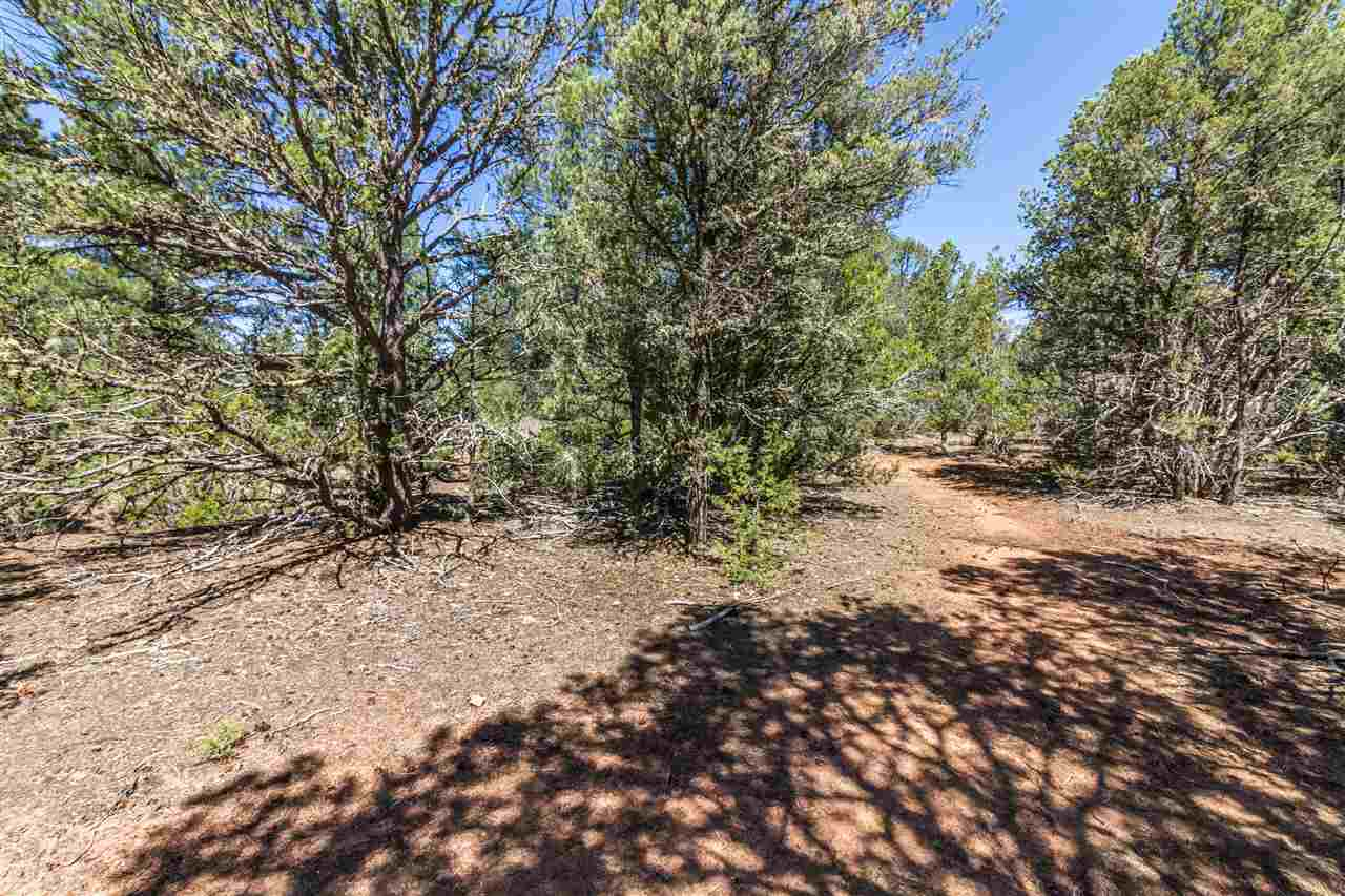 Residential Lot - Pecos, NM (photo 5)
