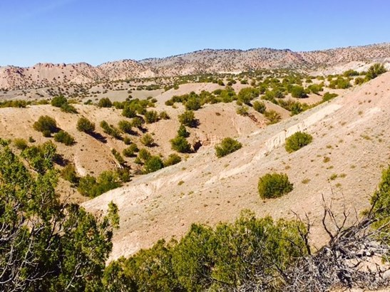 Residential Lot - Abiquiu, NM (photo 3)