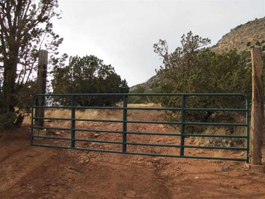 Residential Lot - Ribera, NM (photo 1)