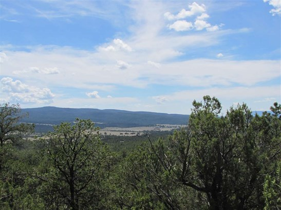 Residential Lot - Rowe, NM (photo 5)