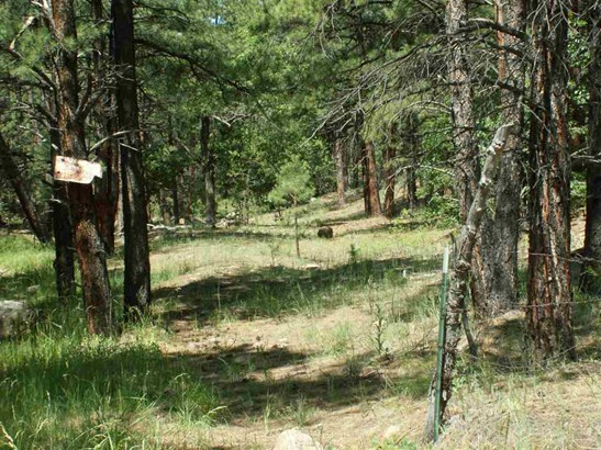Residential Lot - Las Vegas, NM (photo 2)