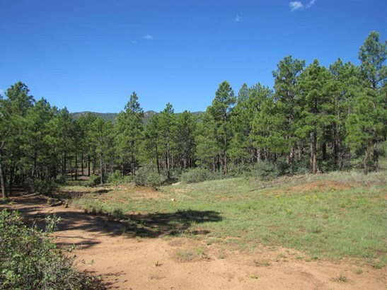 Residential Lot - Las Vegas, NM (photo 4)