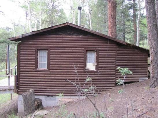 Cabin, Single Family - Terrero, NM (photo 3)