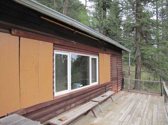 Cabin, Single Family - Terrero, NM (photo 4)