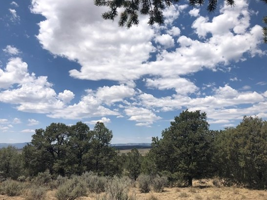 Ranch, Pleasure - Cebolla, NM (photo 1)