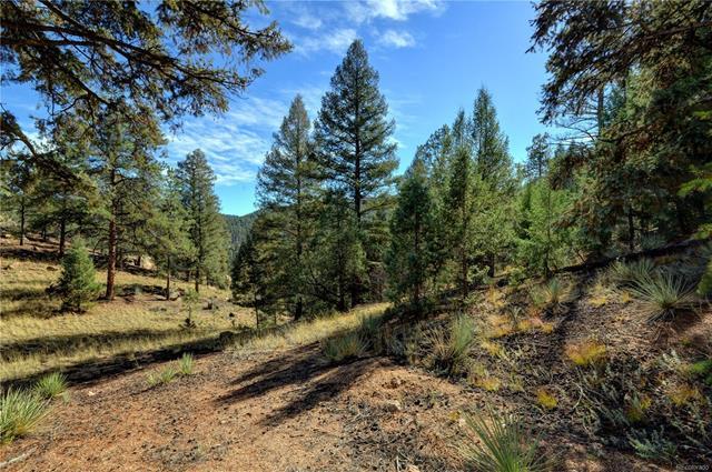 17038 Blue Heron Drive, Pine, CO - USA (photo 1)