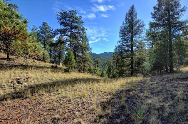 17038 Blue Heron Drive, Pine, CO - USA (photo 3)
