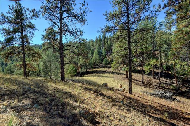 17038 Blue Heron Drive, Pine, CO - USA (photo 4)