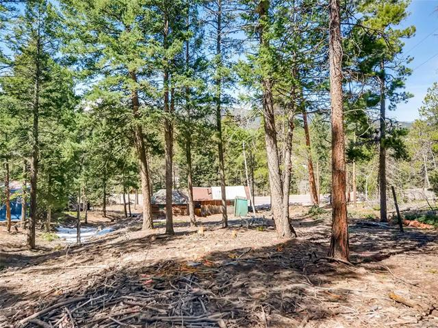 26460 Pleasant Park Road, Conifer, CO - USA (photo 5)