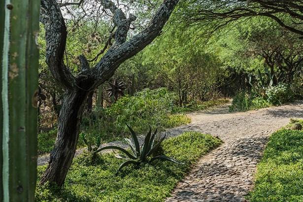 11 La Mesita, San Miguel De Allende - MEX (photo 2)