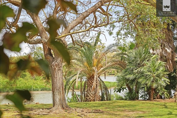 Beautiful riverside property for sale on Paseo del Parque – Sotogrande Costa (photo 5)