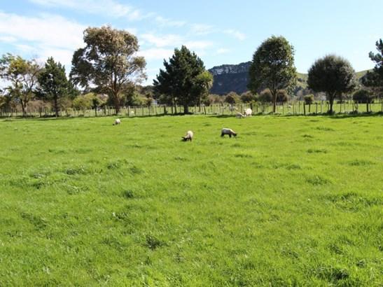 46 Short Road, Pahiatua, Tararua - NZL (photo 4)