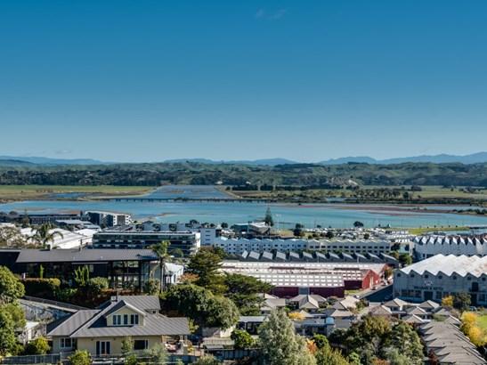 6 Denholm Road, Hospital Hill, Napier - NZL (photo 5)