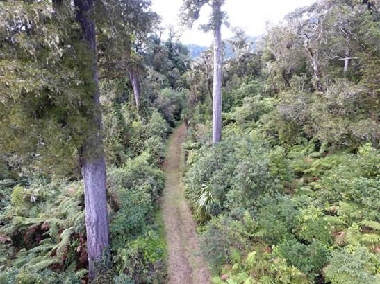 - Lower Buller Gorge, Inangahua Junction, Buller - NZL (photo 3)