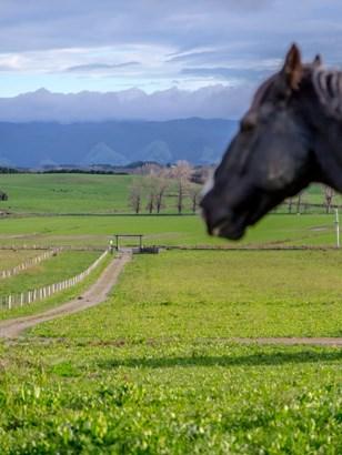1031 Lake Ferry Road, Lake Ferry, South Wairarapa - NZL (photo 2)