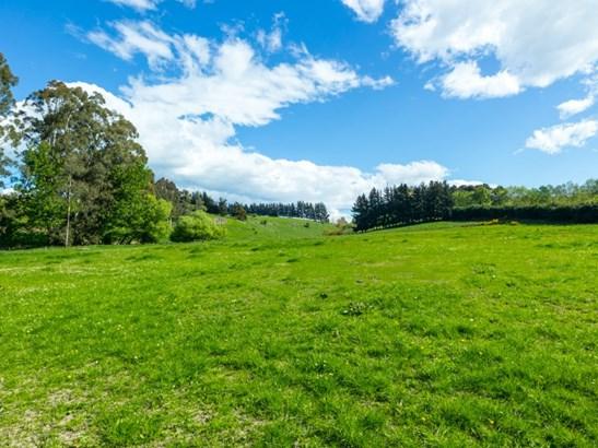 35 Rocky Hundreds Road, Fairview, Timaru - NZL (photo 4)
