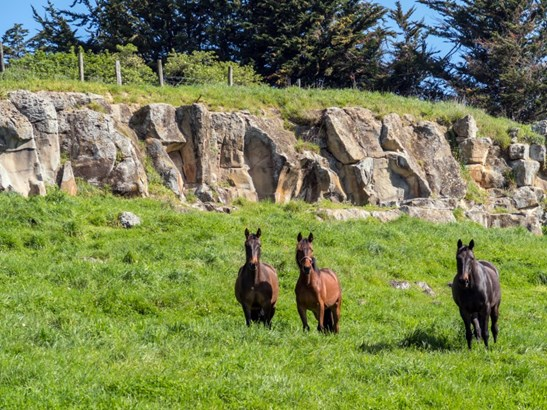 35 Rocky Hundreds Road, Fairview, Timaru - NZL (photo 2)