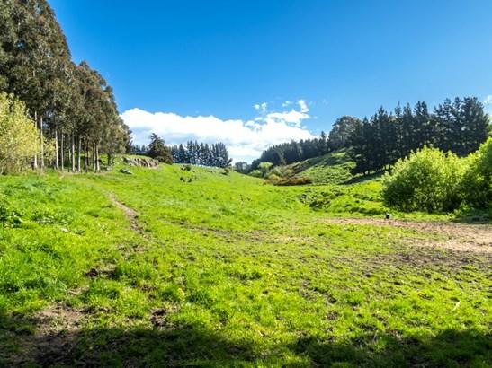 35 Rocky Hundreds Road, Fairview, Timaru - NZL (photo 5)